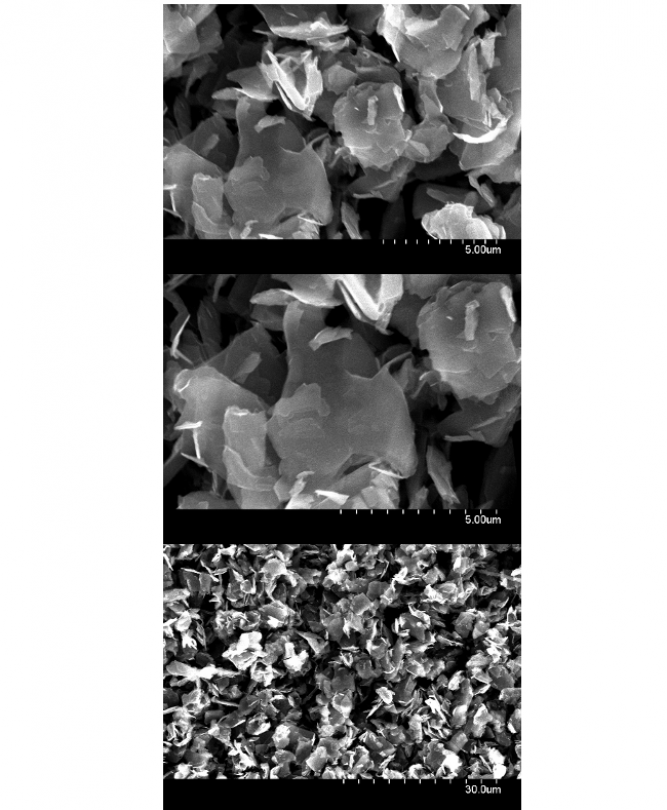 Typical SEM images of dry nanopowder